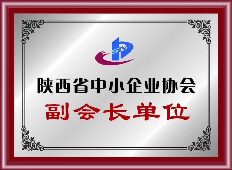 陕西省中小企业协会副会长单位